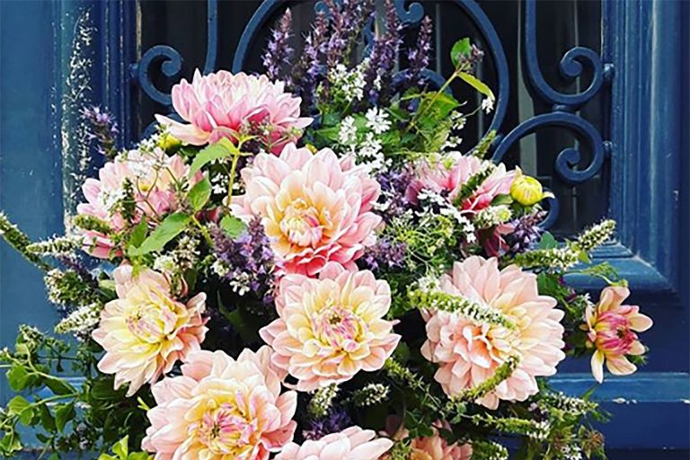 Atelier de création de bouquet de fleurs comestibles